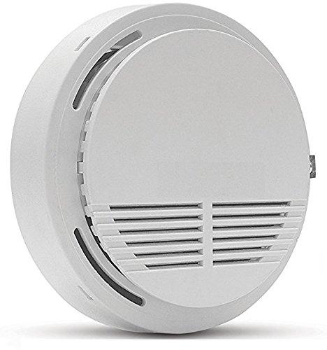 standalone gas leak detector