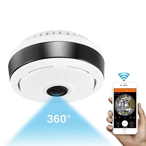 Standalone Wireless Camera